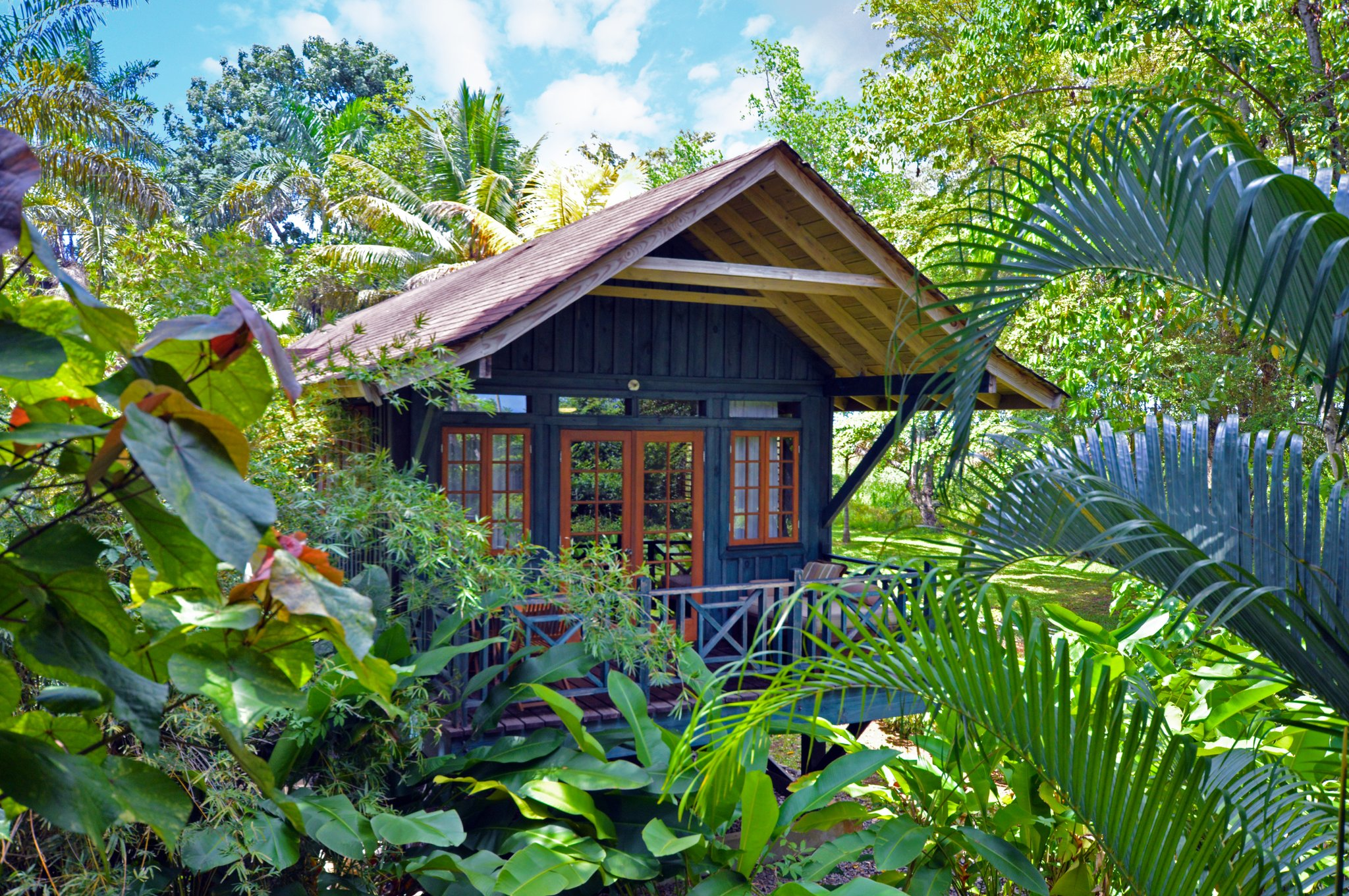 TreeTop Deluxe Accommodations In Negril, Jamaica