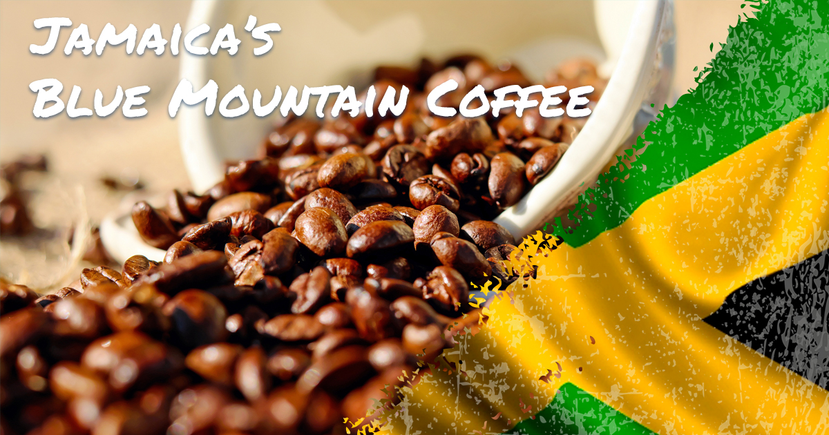 Blue Mountain Coffee Jamaica Airport