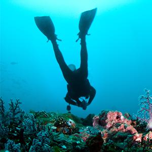 padi open water negril jamaica